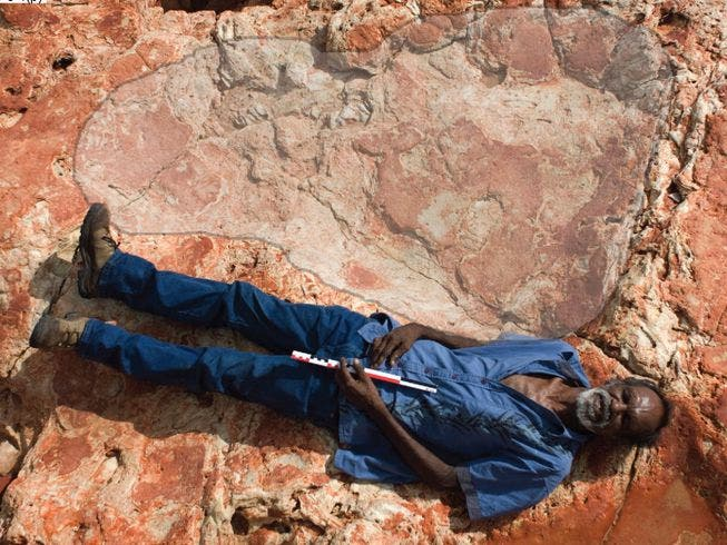 This sauropod footprint is among the largest in the world if not the largest. As you can notice, it was big enough to cover a grown man. Credit: Salisbury et al, Journal of Vertebrate Paleontology.