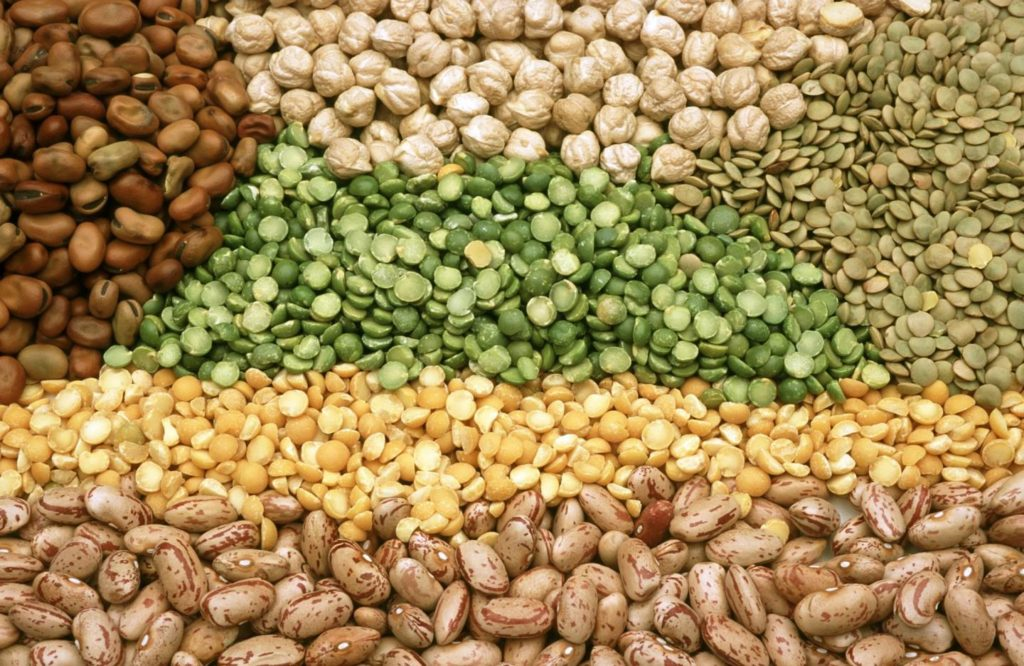 legumes fight against diabetes
