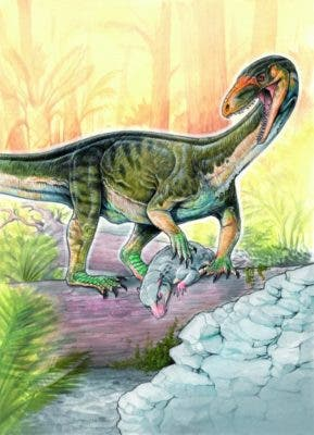 early dinosaur relative