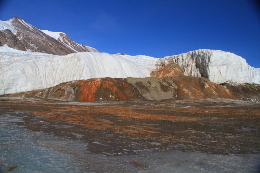 Antarctica's famous Blood Falls has water iron-rich water. Now, scientists have found the 'heart' -- brine deposits flowing underneath a glacier. Credit: Erin Pettit.