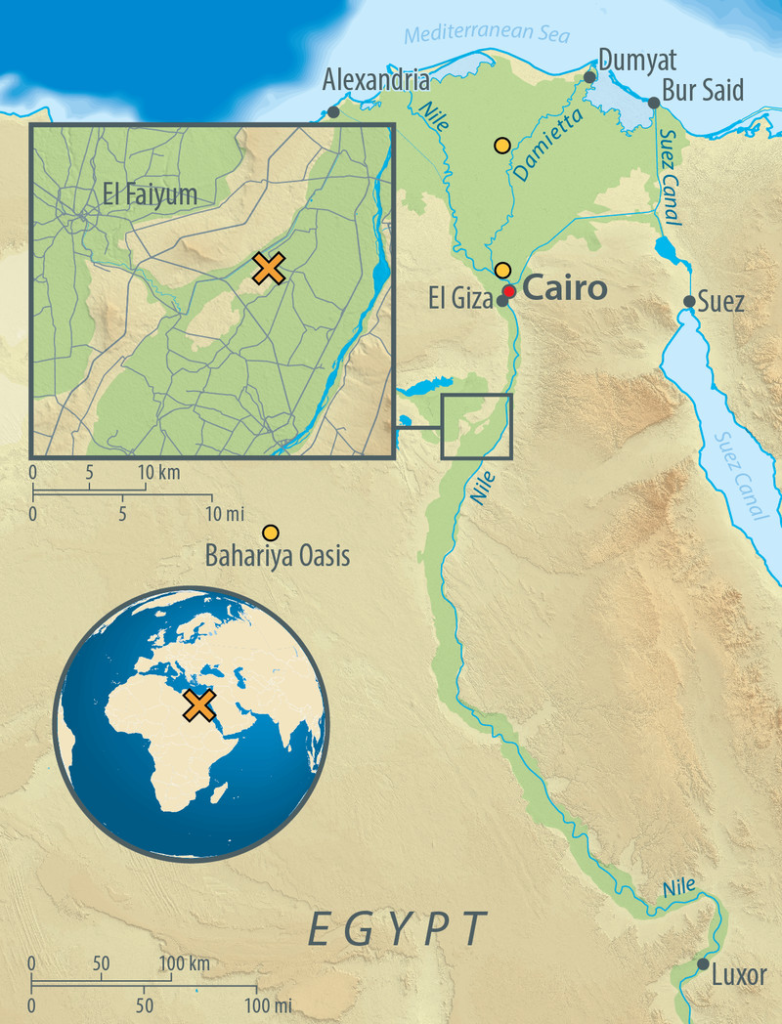 Map of Egypt, showing the archaeological site of Abusir-el Meleq (orange X), and the location of the modern Egyptian samples used in the study (orange circles). Credit: Graphic: Annette Guenzel.