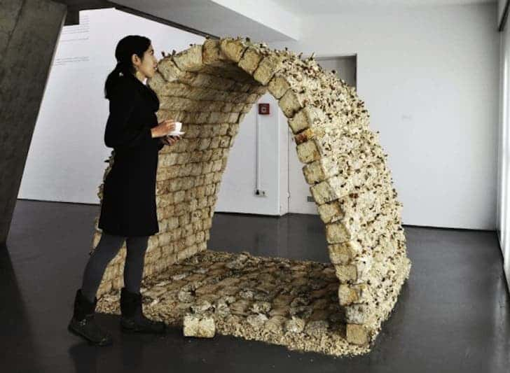 This arched-structure was exhibited at the Kunsthalle Düsseldorf as part of the 2009 Eat Art exhibit.