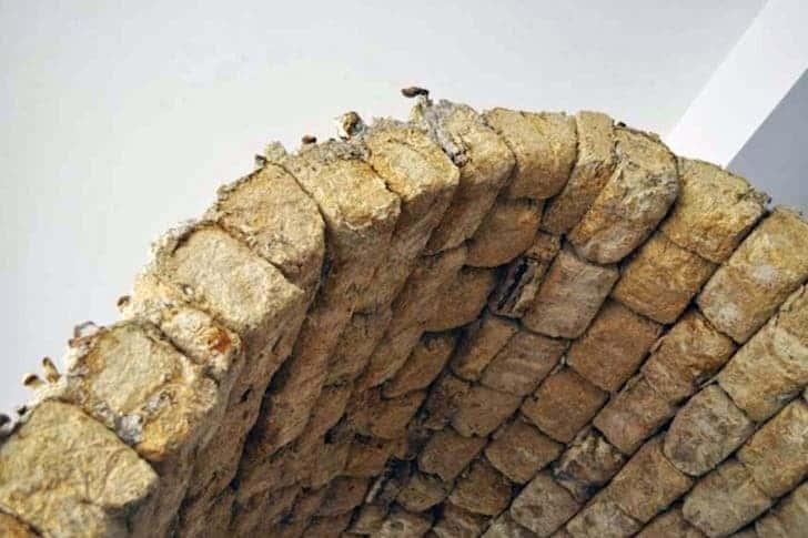 mushroom bricks