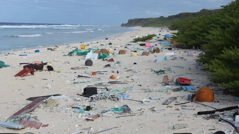Henderson Island was once regarded as one of the most pristine landscapes in the world. This makes this desolate sight from Henderson even more hurtful. Every day, some 27 new pieces of junk wash up on the island according to a new study. Credit: Jennifer Lavers/University of Tasmania.
