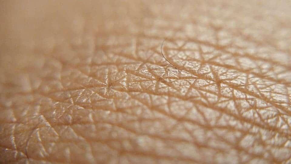 Human skin.