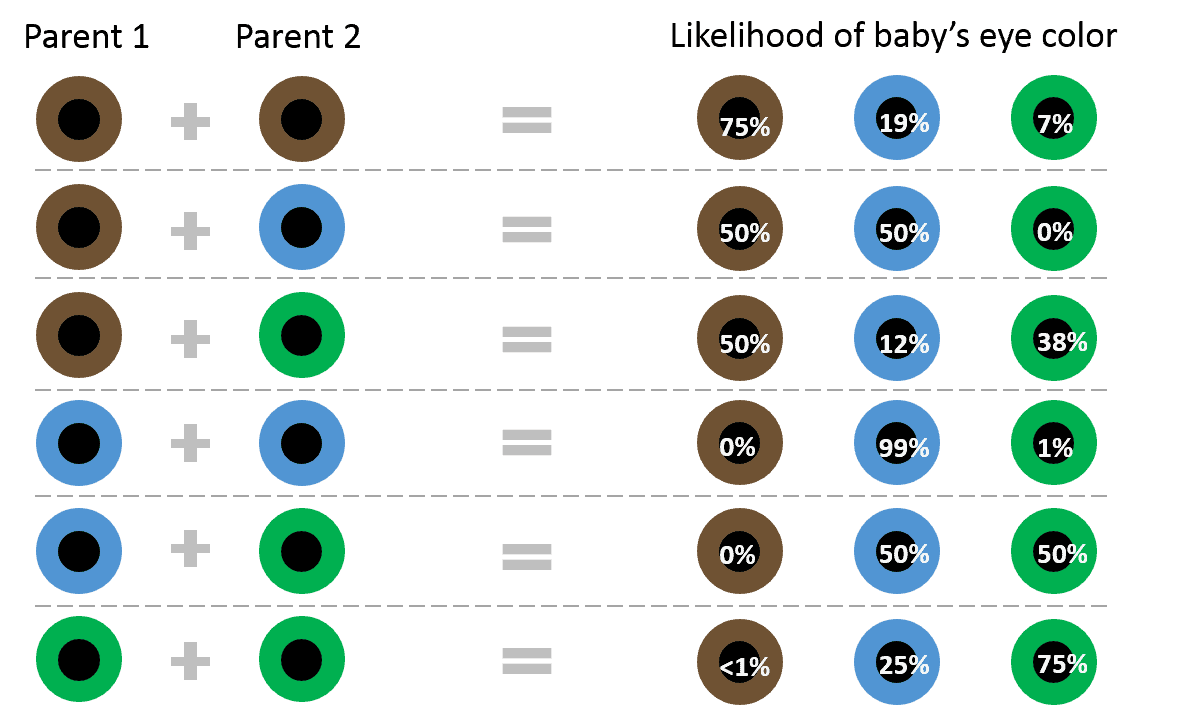 Note that this chart only takes into account parents' eye colors. Because it only factors in the phenotype (i.e. what color the eyes appear) and not the genes themselves, it is not going to be 100% accurate in every case. Credit: SittingAround.