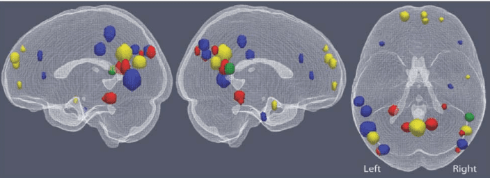 Brain regions associated with the four large-scale semantic factors: people (yellow), places (red), actions and their consequences (blue), and feelings (green). Credit: Human Brain Mapping.