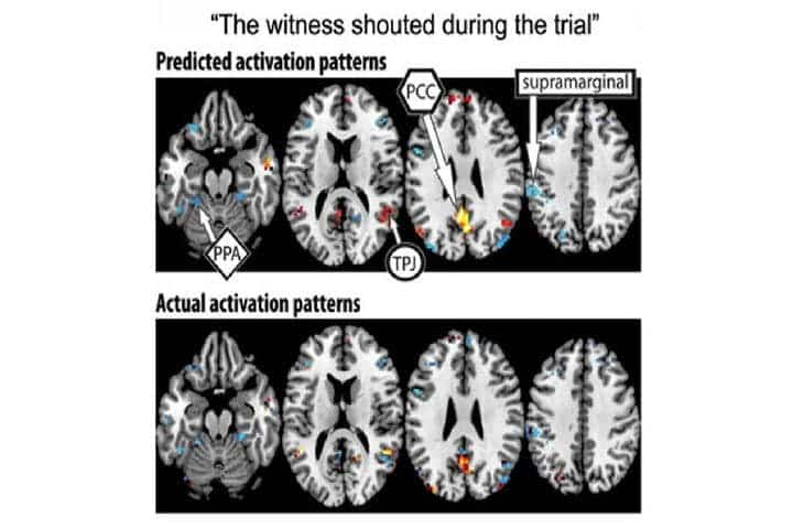 "scientists can now use brain activation patterns to identify complex thoughts, such as, ""The witness shouted during the trial."" Credit: CMU."