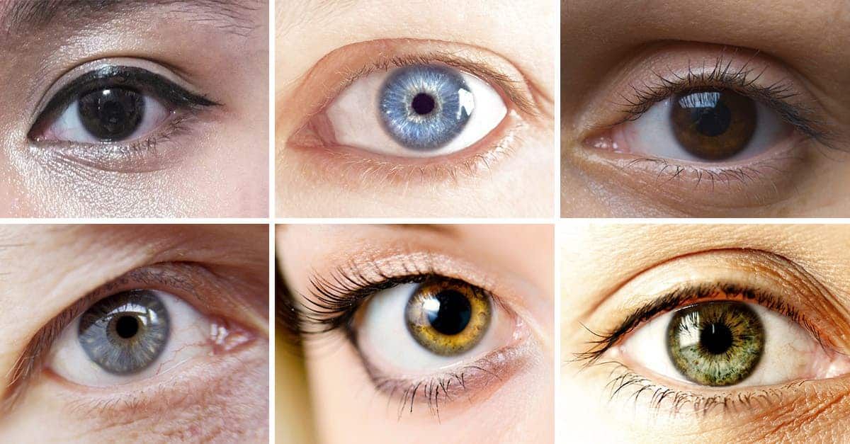 why eyes have different colors a science based look