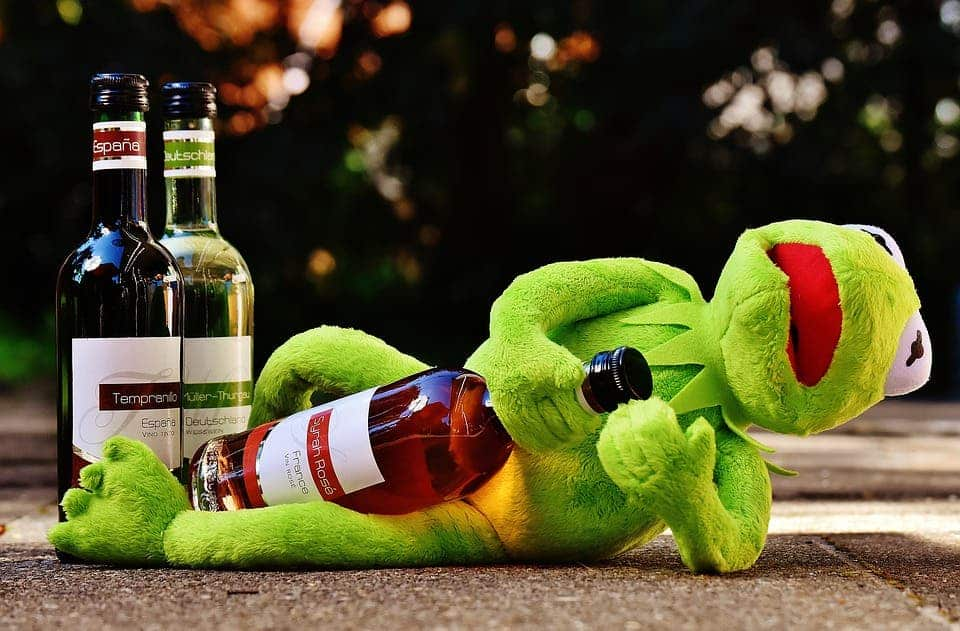 Kermit with wine.