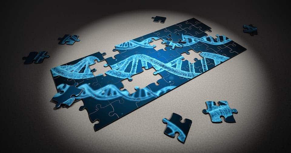 Gene cutting.