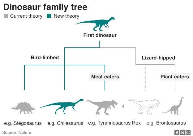 97408204_dinosaur_familytree_624_v2
