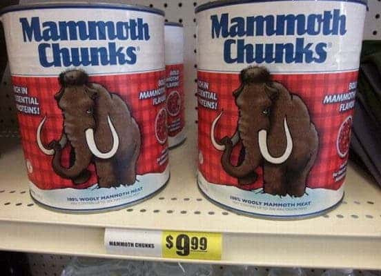 Mammoth Chunks.