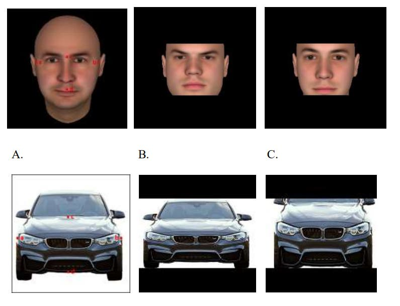 People prefer wider faces on products if they are seeking to show dominance or would like to project importance. Credit: Journal of Consumer Research.