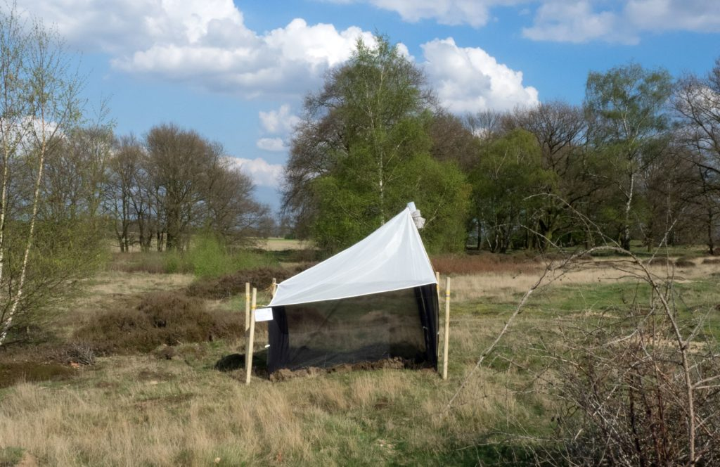 A malaise trap in a nature protection area in Germany. Credit: Hallmann et al (2017).
