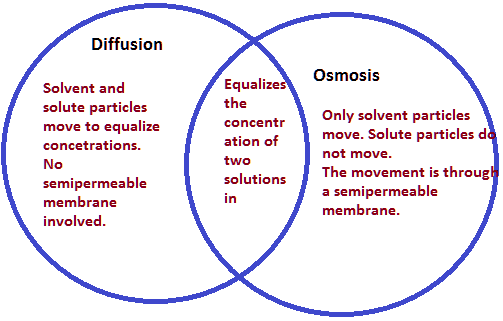 osmosis-and-diffusion-venn-diagram