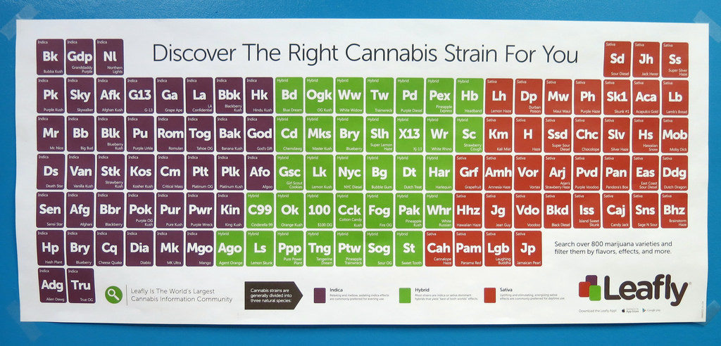 Leafly poster.