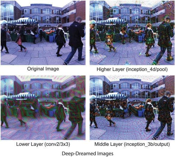 An example of the original scene (top left) and Deep-Dreamed scenes (top right, bottom left and right). Credit; Scientific Reports.