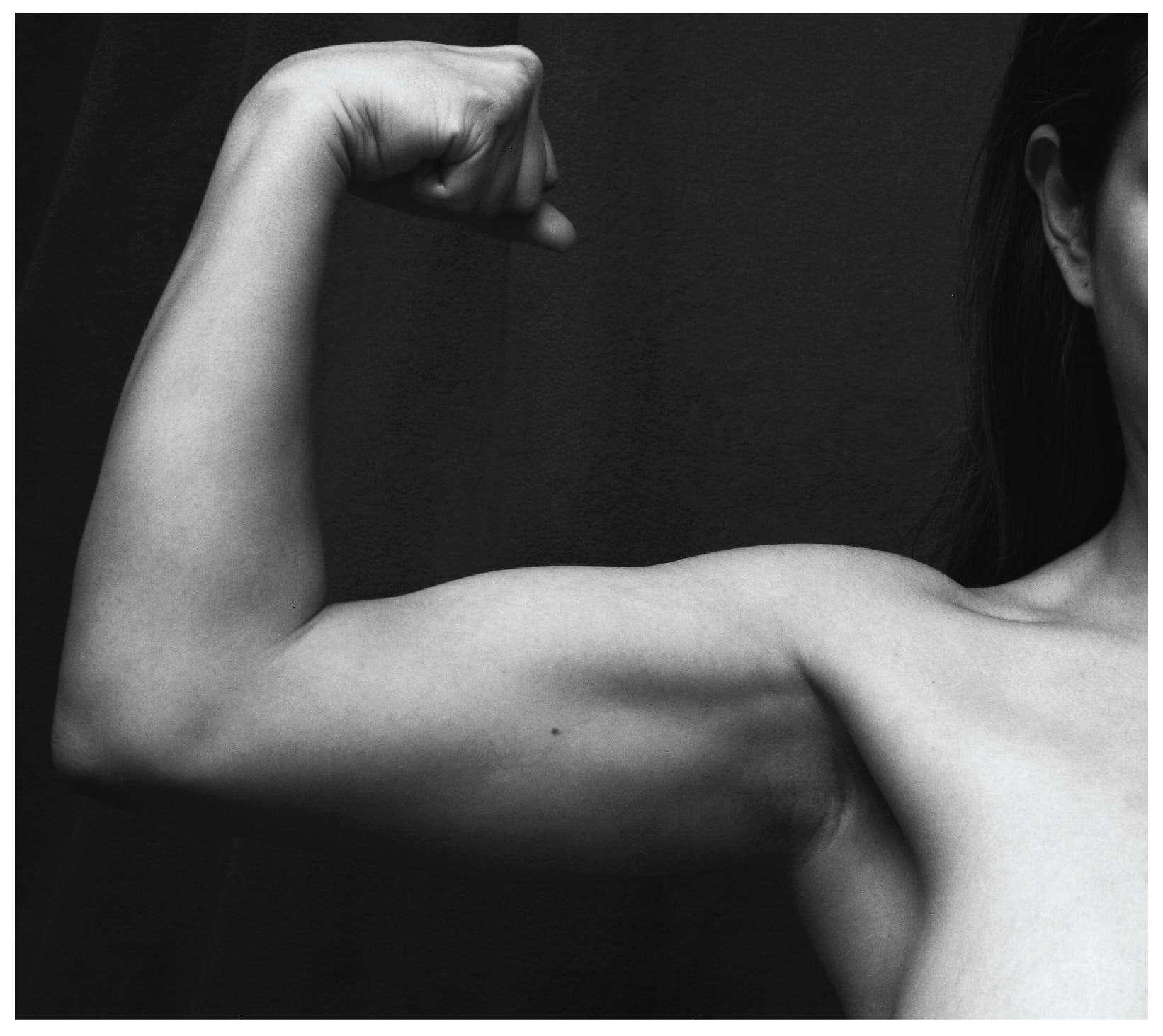 Biceps_Brachii_Muscle_Contraction.jpg