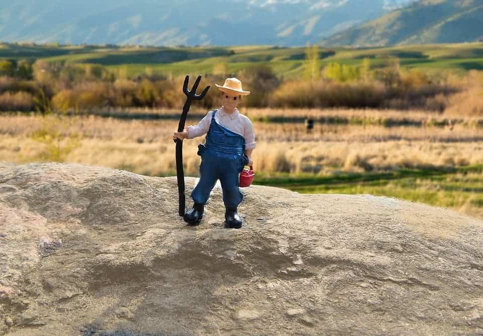 Farmer toy.