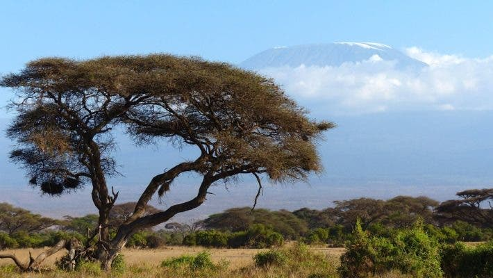 Mount Kilimanjaro is one of the vulnerable nature World Heritages sites listed by the IUCN since its glaciers are shrinking in the face of global warming. Credit: Pixabay.