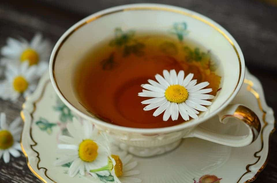 Can a cup of hot tea every day keep glaucoma away?