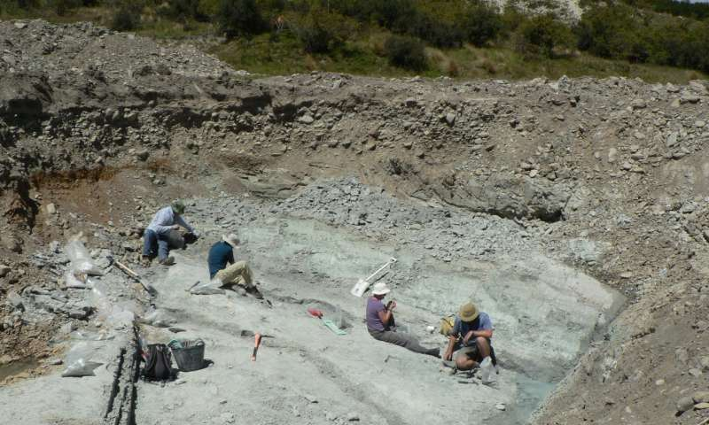 The fossil dig site at St Bathans in New Zealand. Credit: Trevor Worthy.