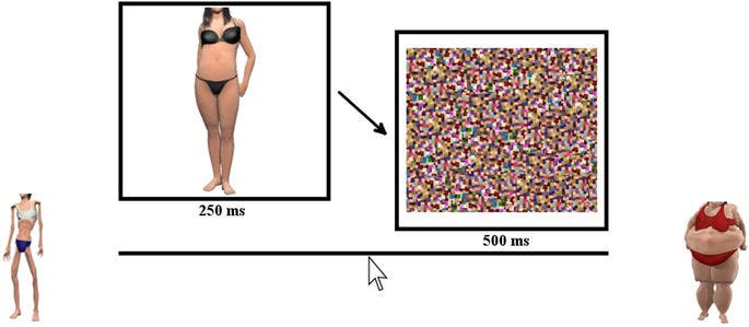 Visual depiction of the bodyline task, in which a female body image was presented for 250 ms, immediately followed by a visual noise mask for 500 ms. Participants indicated the perceived size of the image by clicking on the bodyline delineated with extreme female bodies as anchors presented a further unit of scale beyond the bounds of the numberline. Credit: Nature.