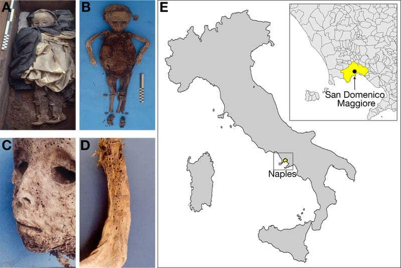 Child mummy in Italy had hepatitis, not smallpox