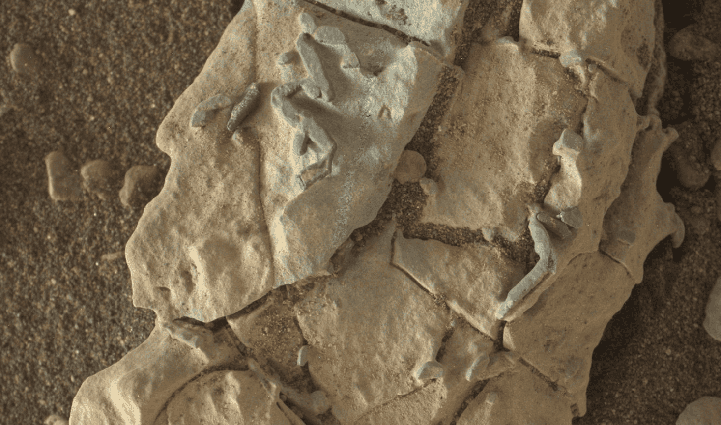 NASA Mars Rover's Images Similar To Trace Fossils: Scientists