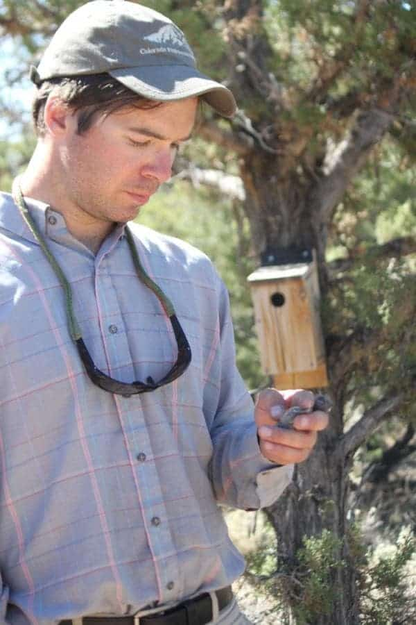 Nathan Kleist checks a bird box near an oil and gas operation in New Mexico. Credit: Nathan Kleist.
