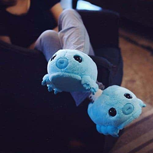 Tardigrade slippers.