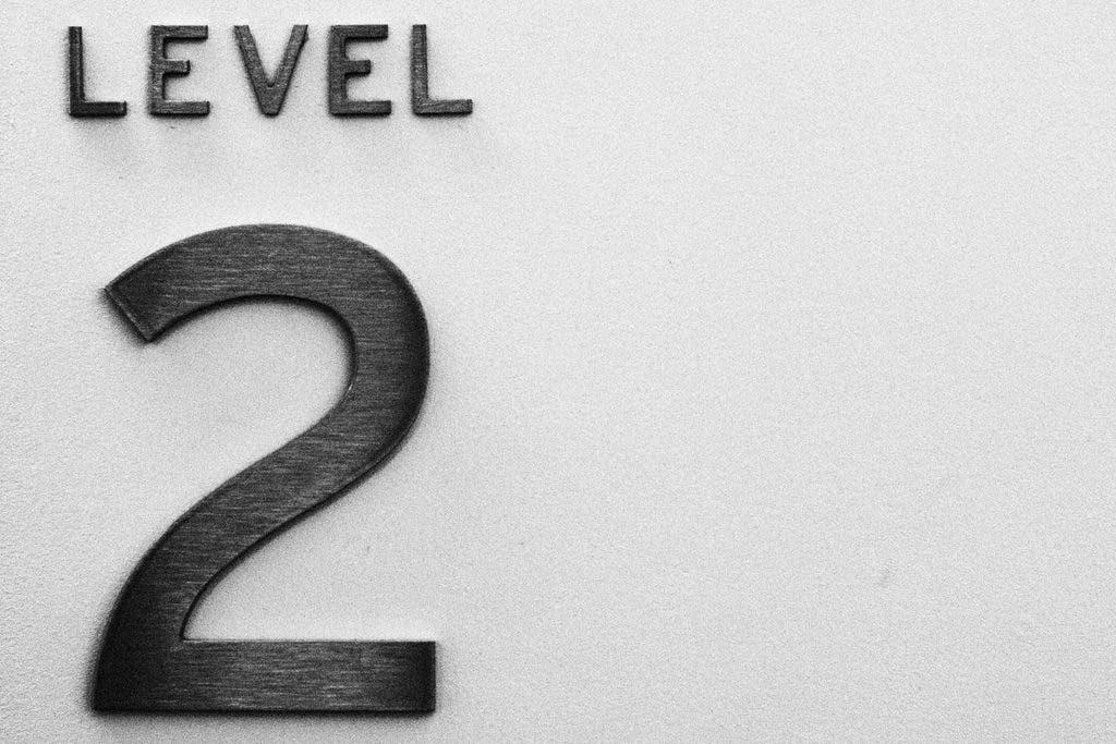 Level 2.