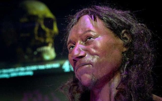 Lifelike reconstruction of 'Cheddar Man'. Credit: Natural History Museum London.