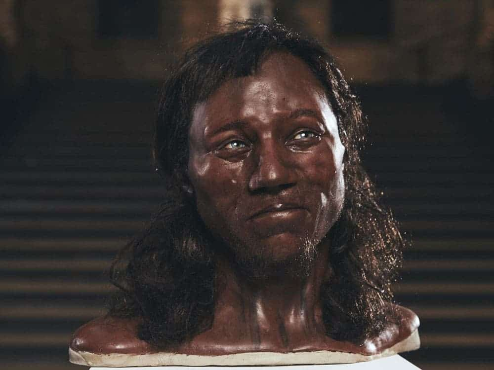 Cheddar Man Dna Suggests Early Britons Had Dark Skin