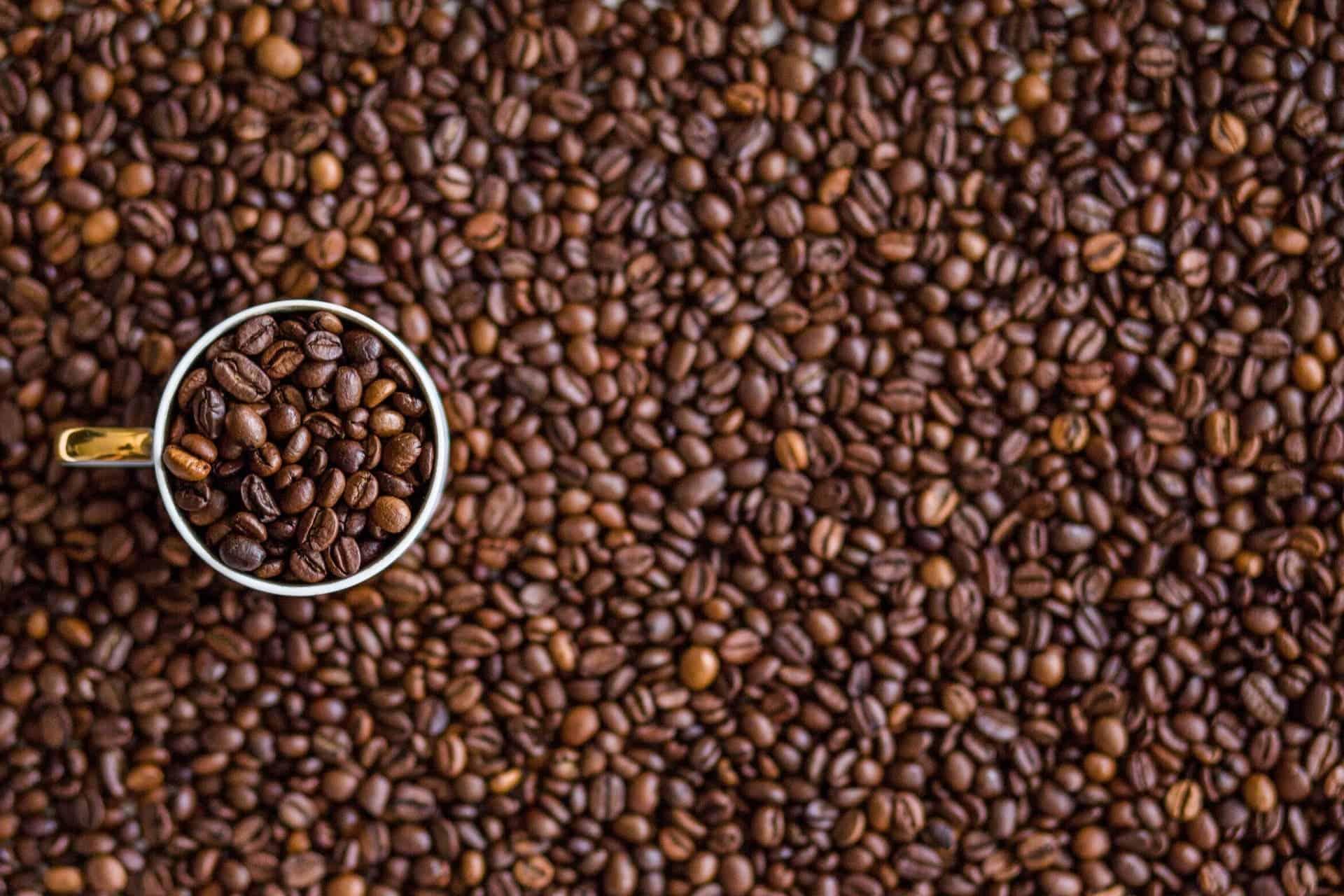 Coffee farming \