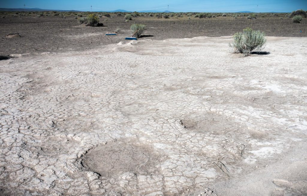 Mammoth footprints dated to 43,000 years ago,which were uncovered by researchers in 2017 in an ancient dry lake bed in Lake County, Oregon. CreditȘ Greg Shine/Bureau of Land Management.