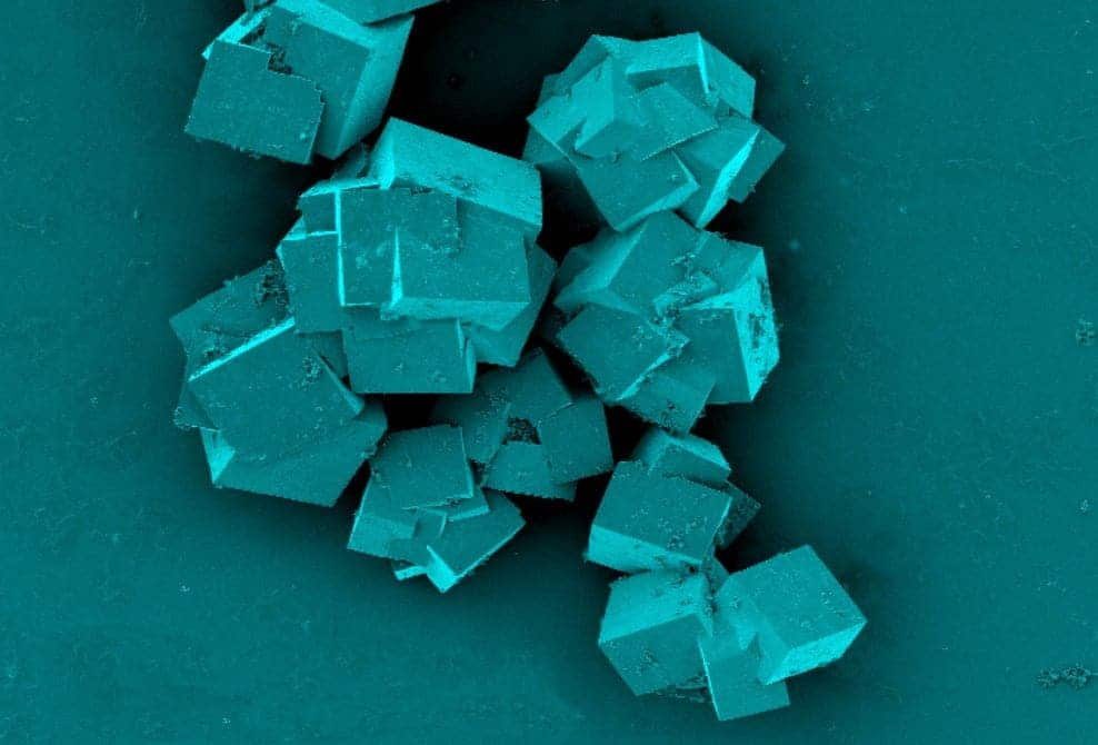 A scanning electron microscope image of metal-organic frameworks used to seaparate seawater into freshwater and lithium. Credit: CSIRO.