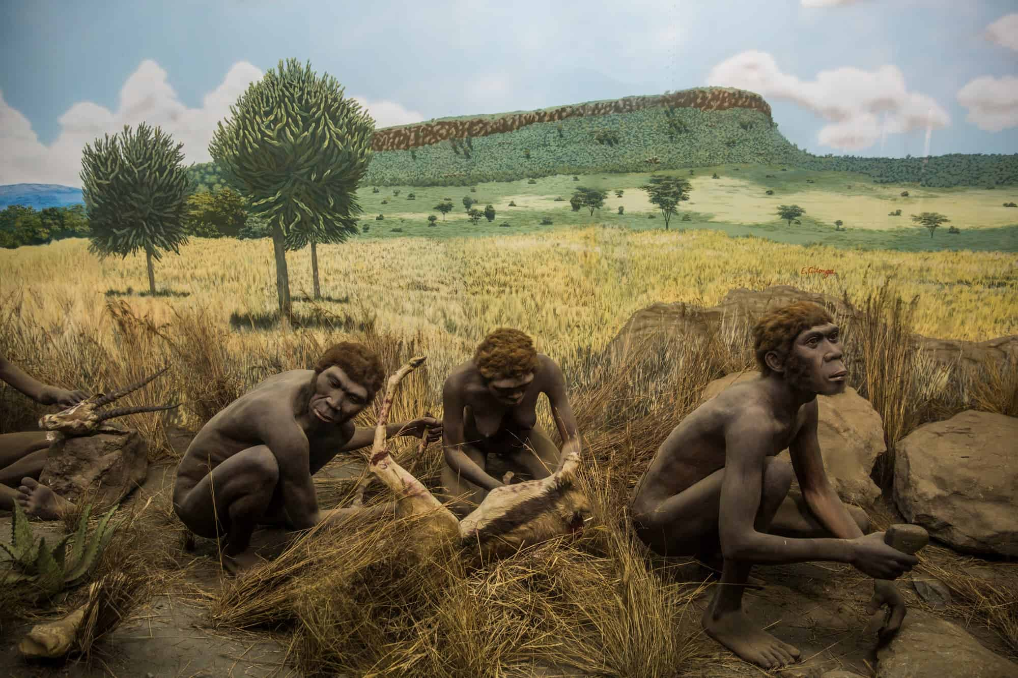 Early humans developed sophisticated tools much earlier than previously thought