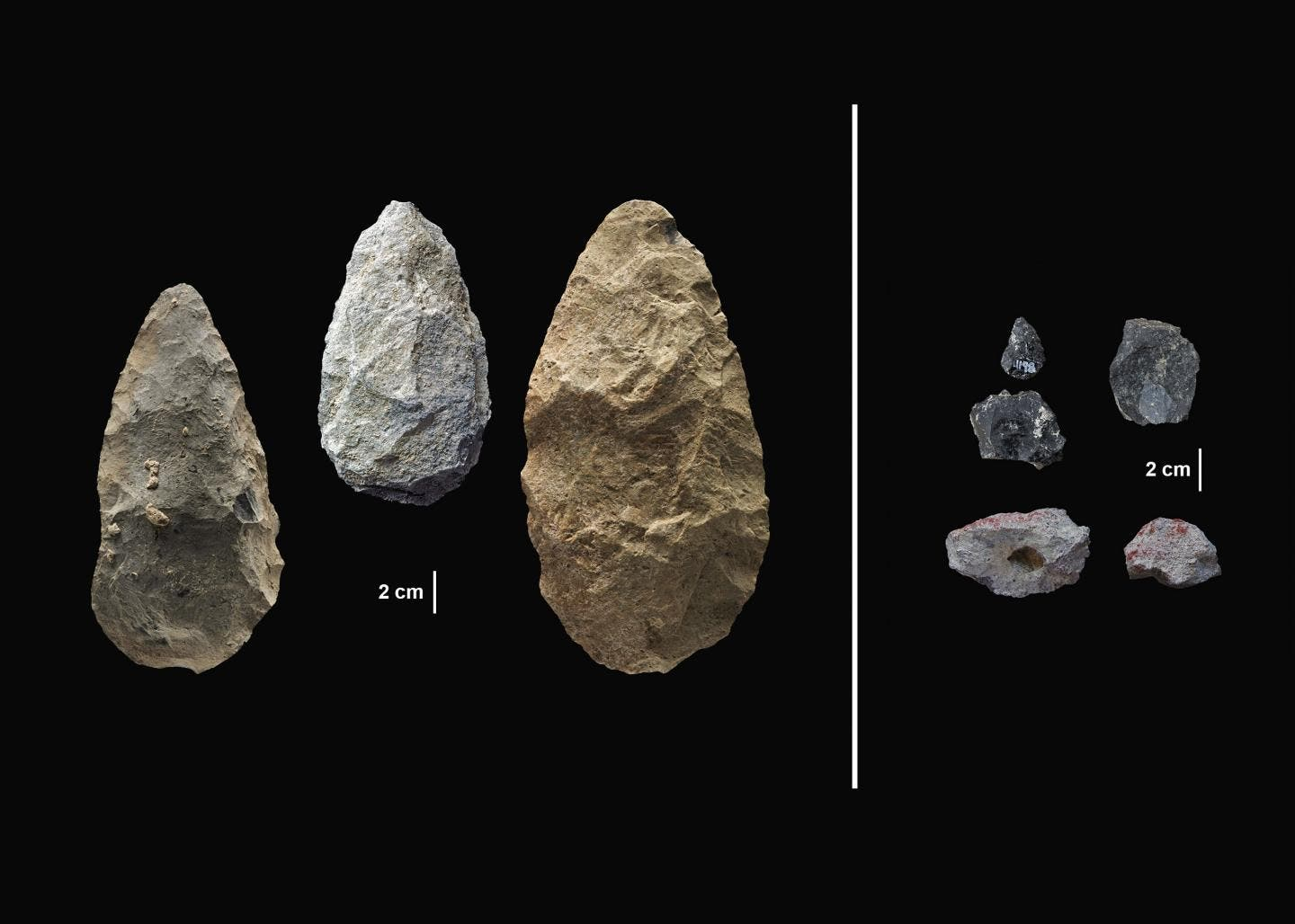 Ancient Tools Discovered in New Excavation Shed Light on Human Behavior