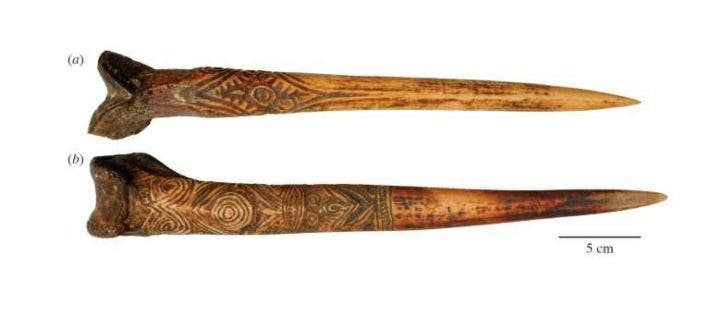 A handout picture released from researcher Nathaniel Dominy shows a human thigh bone dagger attributed to the Upper Sepik River (up) and cassowary bone dagger attributed to the Abelam people (down). Credit: Dartmouth College.