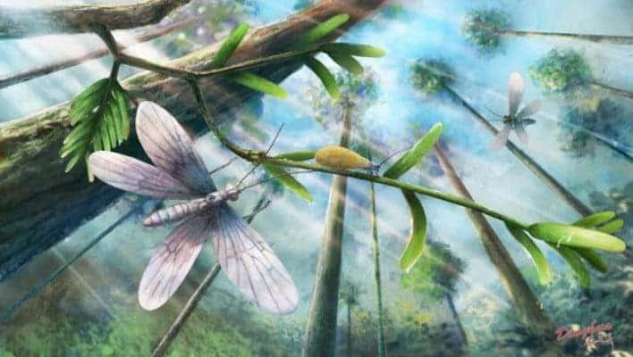 Ecological restoration of moths in the Cretaceous Burmese amber forest. Credit: YANG Dinghua.