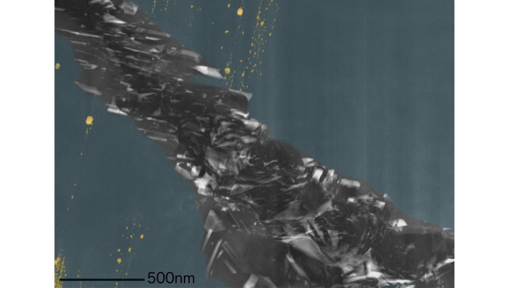 A colorized image shows the diamond phase (blue), inclusions (yellow) and the graphite region. Credit: Dr. F. Nabiei/Dr. E. Oveisi/Prof. C. Hébert, EPFL, Switzerland.