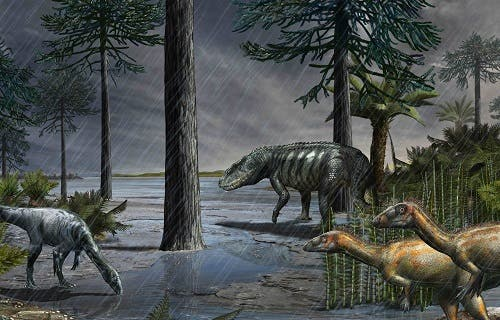 A life-scene from 232 million years ago, during the Carnian Pluvial Episode after which dinosaurs took over. A large rauisuchian lurks in the background, while two species of dinosaurs stand in the foreground. Based on data from the Ischigualasto Formation in Argentina. Credit: Davide Bonadonna.