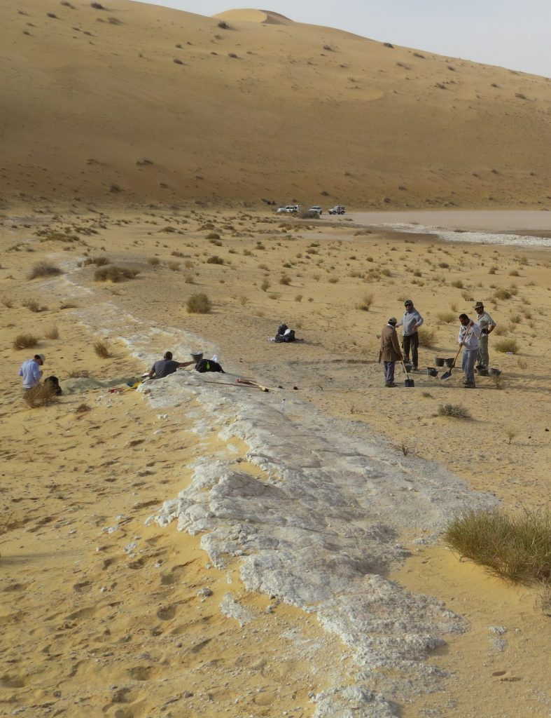 General view of the excavations at the Al Wusta site, Saudi Arabia. The ancient lake bed (in white) is surrounded by sand dunes of the Nefud Desert. Credit: Michael Petraglia