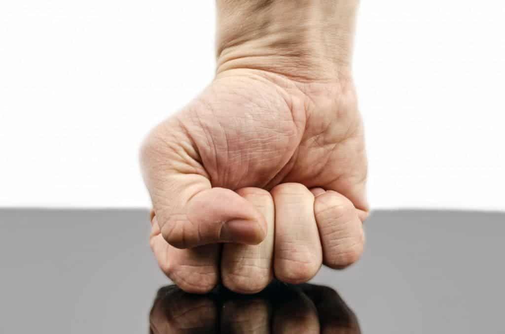 Fist.