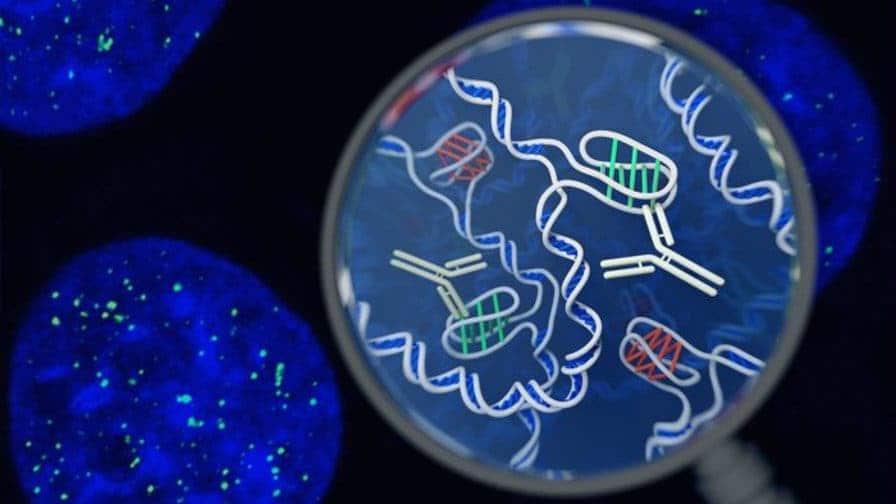 Artist impression of the i-motif DNA structure. Credit: Chris Hammang.