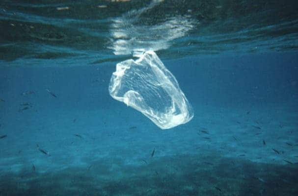 Plastic sandwich baggy floating in the water column. Fish that feed on various salps, jelly-fish, etc. mistake such trash for food and can ingest this with fatal consequences. Credit: Ben Mierement, NOAA NOS.