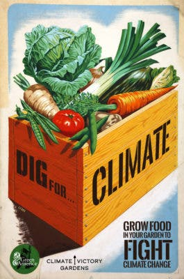Dig for Climate.