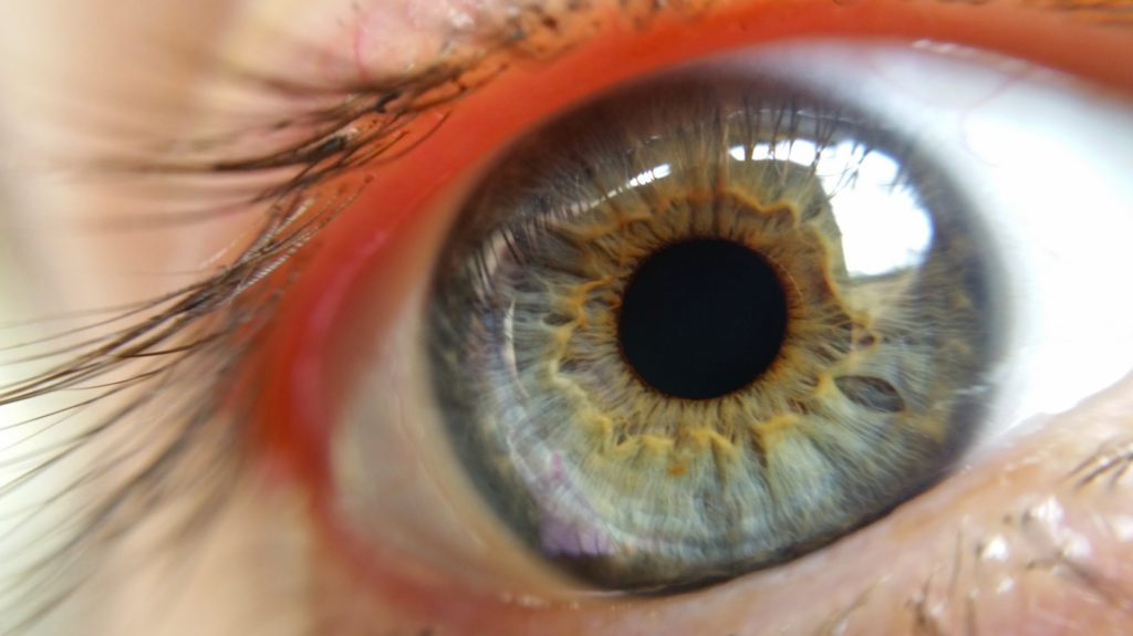 Eye macro photography.